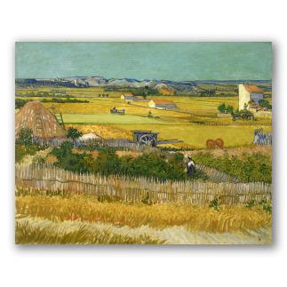 La Cosecha - Van Gogh